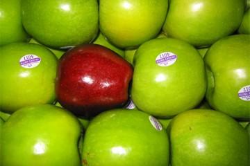 Apple_courtoisie, brookston photoblog, San Rafael
