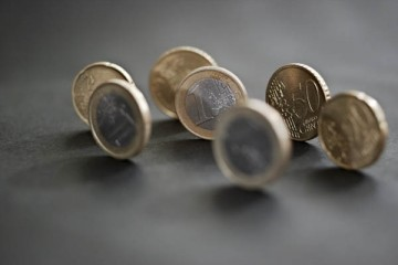 Euro, courtoisie, fotopedia, mammal, creative commons